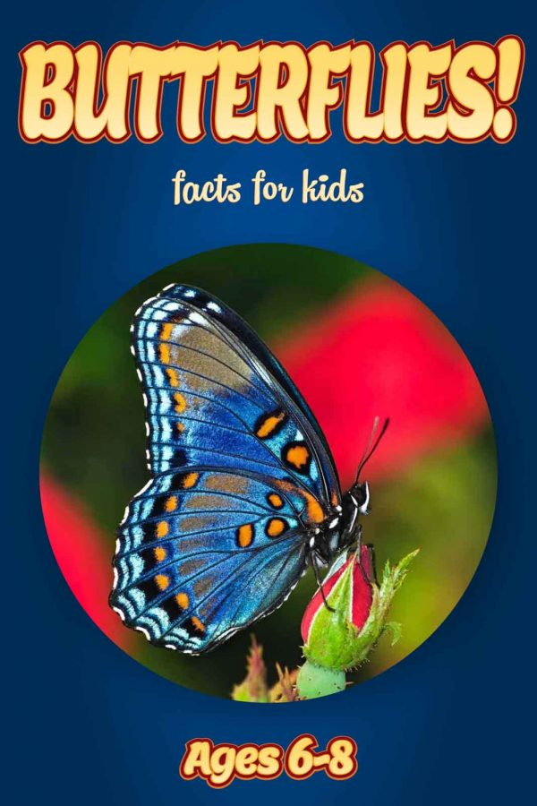 Butterfly Facts for Kids - Nonfiction Ages 3-6