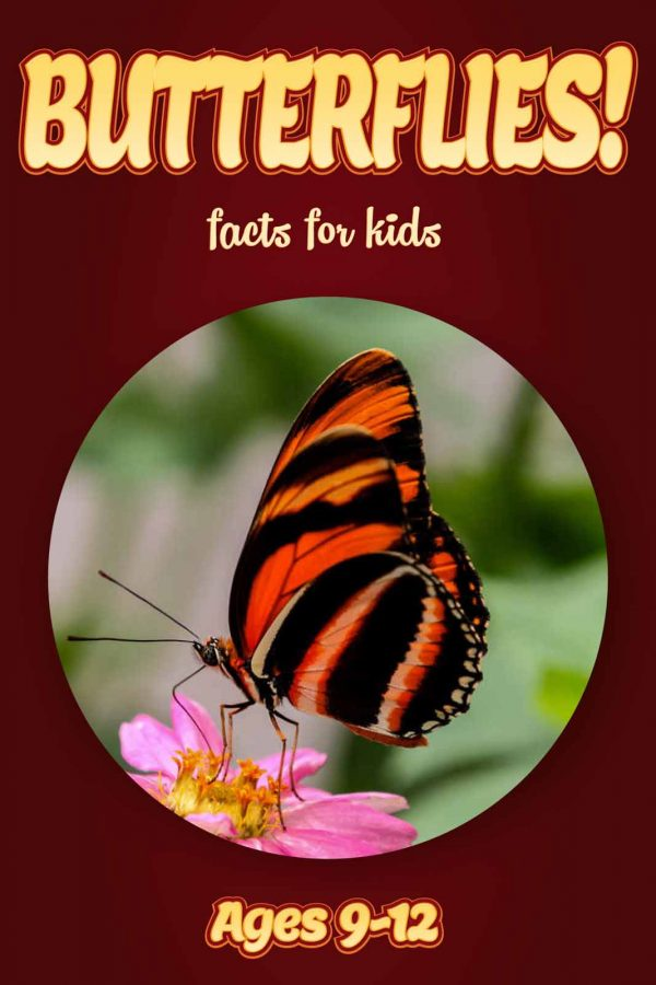 Butterfly Facts for Kids - Nonfiction Ages 9-12
