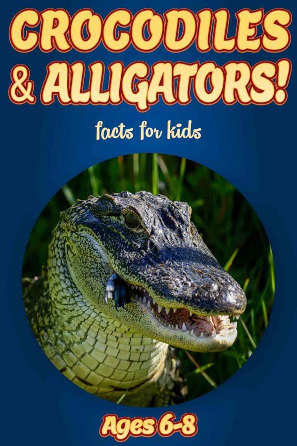 Crocodile Facts for Kids - Nonfiction Ages 3-6