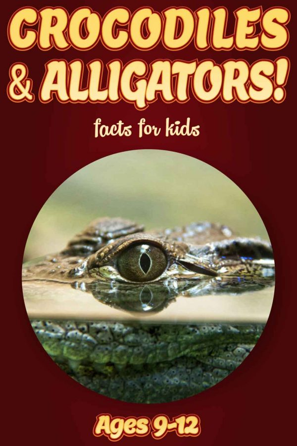 Crocodile Facts for Kids - Nonfiction Ages 9-12