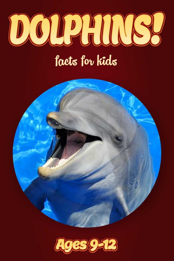 Dolphin Facts for Kids - Nonfiction Ages 9-12