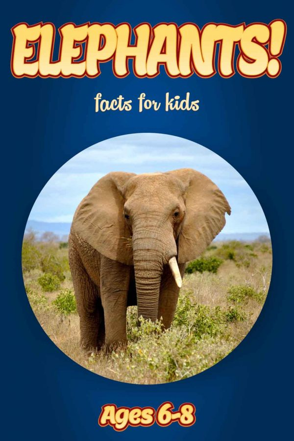 Elephant Facts for Kids - Nonfiction Ages 3-6