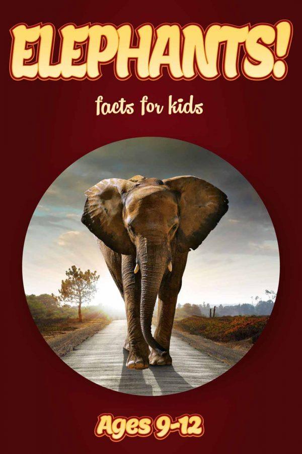 Elephant Facts for Kids - Nonfiction Ages 9-12