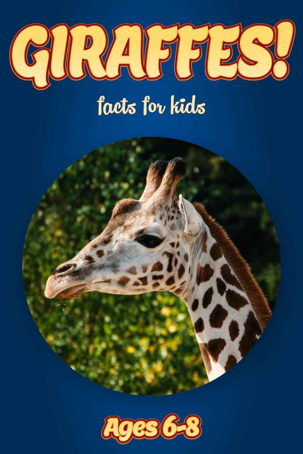 Giraffe Facts for Kids - Nonfiction Ages 3-6