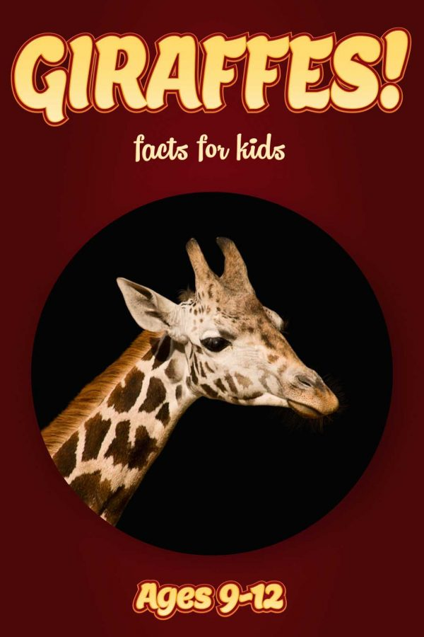 Giraffe Facts for Kids - Nonfiction Ages 9-12