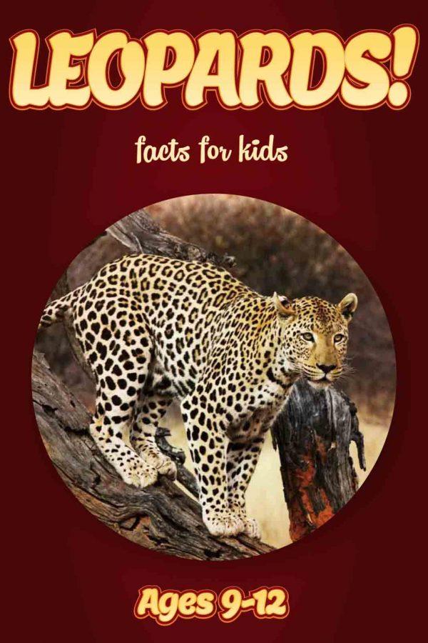 Leopard Facts for Kids - Nonfiction Ages 9-12