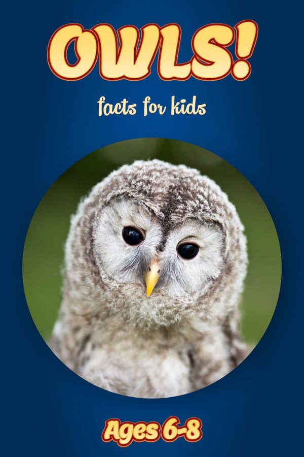 Owl Facts for Kids - Nonfiction Ages 3-6