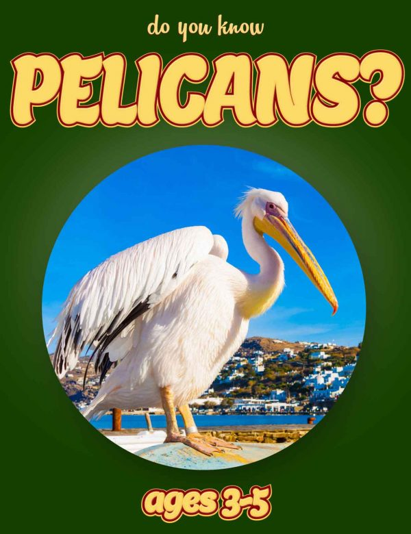 Pelican Facts for Kids - Nonfiction Ages 3-5