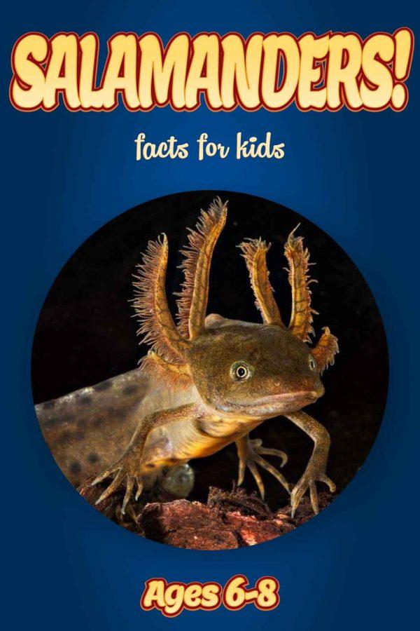 Salamander Facts for Kids - Nonfiction Ages 3-6