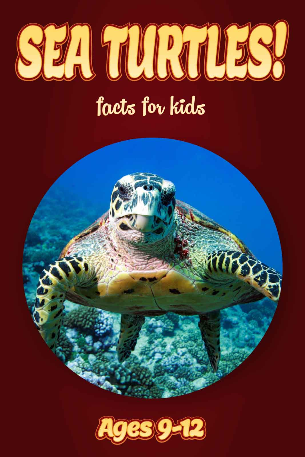 giraffe facts for kids kids nonfiction book clouducated ages