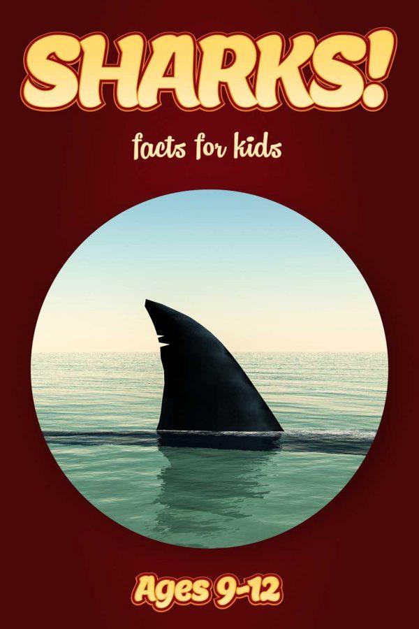 AGE 9-12: Kids Book Club (Pack of 24 Books)