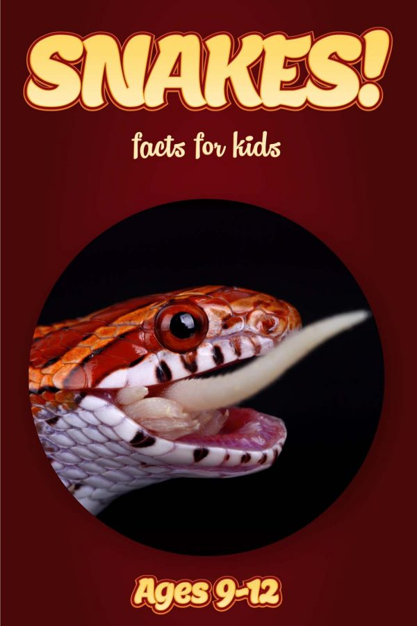Snake Facts for Kids - Nonfiction Ages 9-12
